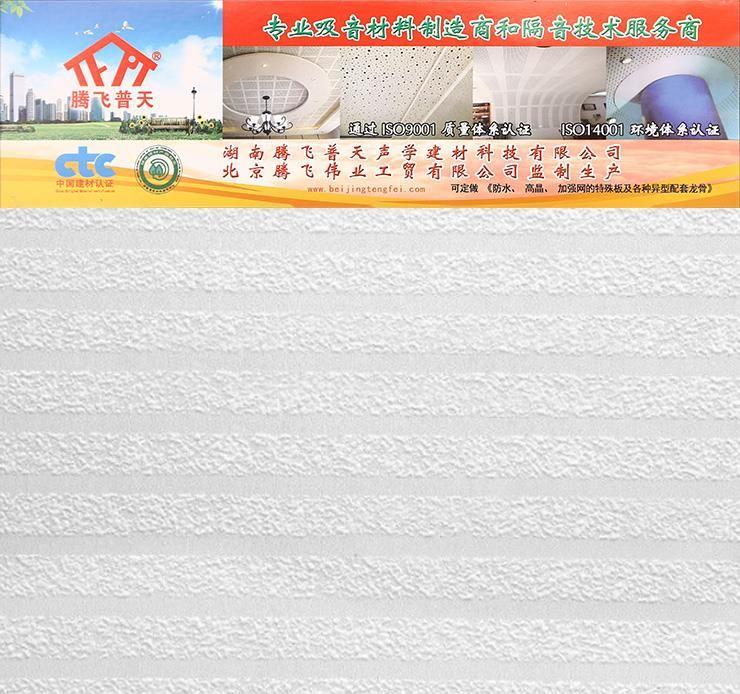 腾飞普天硅酸钙浮雕板 Cr—05