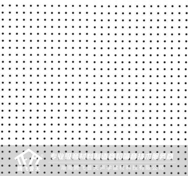 腾飞普天硅酸钙吸音板 Cs—01